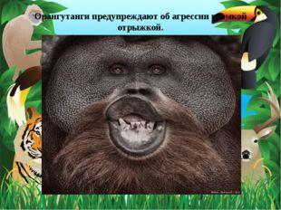 Орангутанги предупреждают об агрессии громкой отрыжкой.