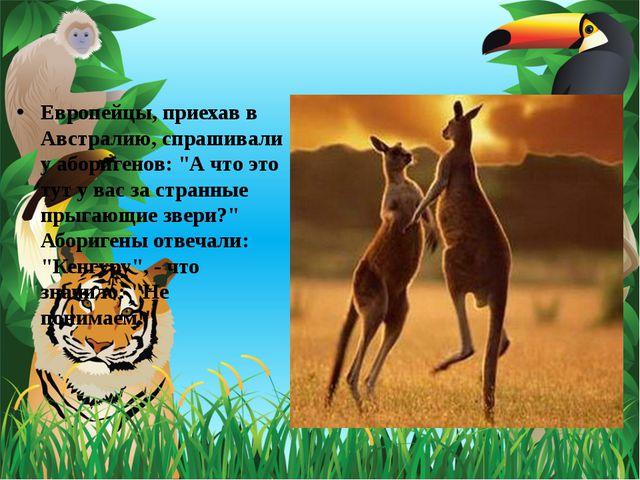 """Европейцы, приехав в Австралию, спрашивали у аборигенов: """"А что это тут у вас..."""