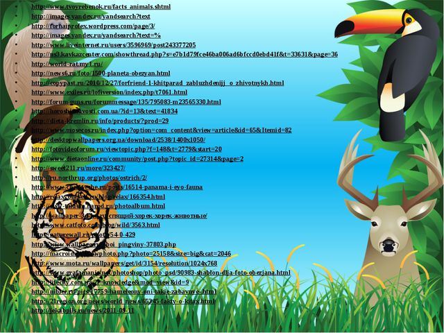http://www.tvoyrebenok.ru/facts_animals.shtml http://images.yandex.ru/yandsea...