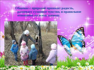 Общение с природой приносит радость, развивает гуманное чувство, и правильное