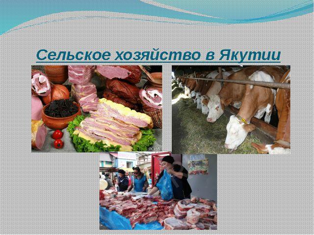 Сельское хозяйство в Якутии
