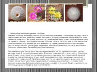 Размножать растенияможно разными способами: семенами,отводками, черенками.