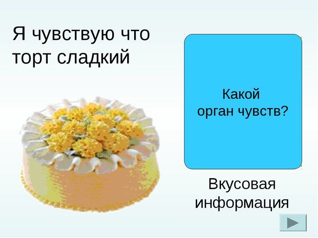Я чувствую что торт сладкий Вкусовая информация Какой орган чувств?