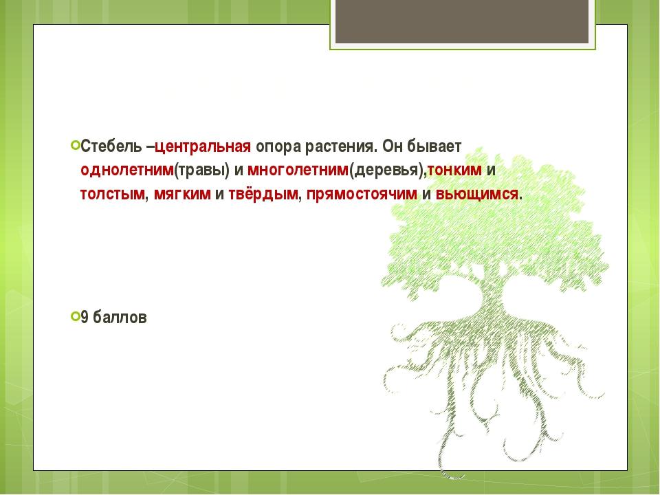 Центр русского языка Стебель –центральная опора растения. Он бывает однолетни...