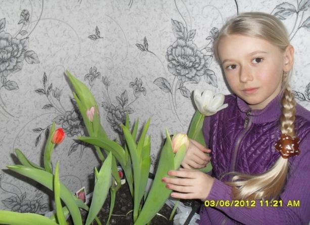 E:\тюльпаны Наташа\SDC14872.JPG