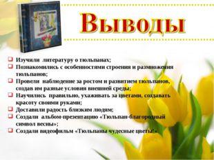 Изучили литературу о тюльпанах; Познакомились с особенностями строения и разм