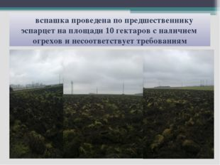 вспашка проведена по предшественнику эспарцет на площади 10 гектаров с налич