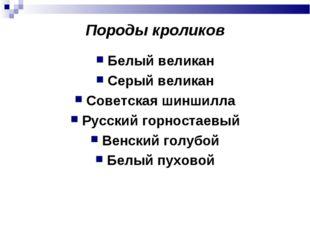 Породы кроликов Белый великан Серый великан Советская шиншилла Русский горнос
