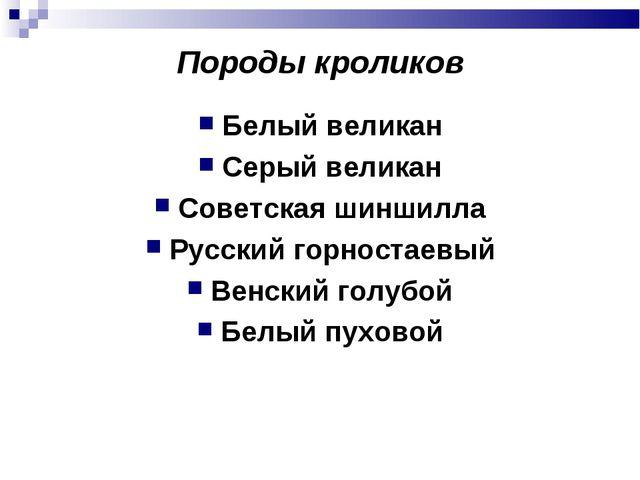 Породы кроликов Белый великан Серый великан Советская шиншилла Русский горнос...