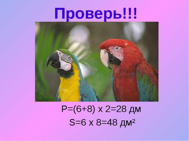 Проверь!!! Р=(6+8) х 2=28 дм S=6 х 8=48 дм²