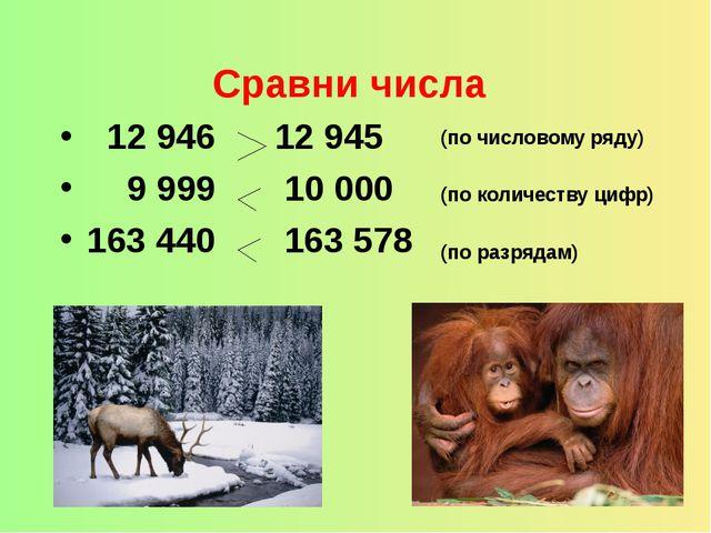Сравни числа 12 946 12 945 9 999 10 000 163 440 163 578 (по числовому ряду)...