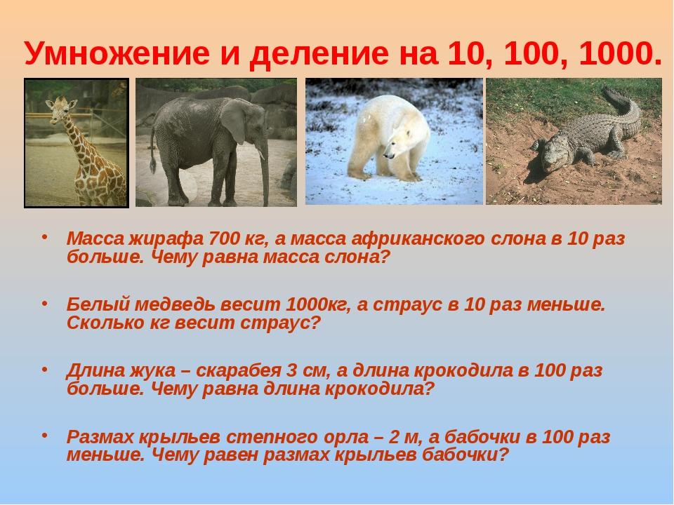Умножение и деление на 10, 100, 1000. Масса жирафа 700 кг, а масса африканско...