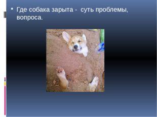 Где собака зарыта - суть проблемы, вопроса.