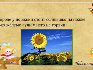 В огороде у дорожки стоит солнышко на ножке. Только жёлтые лучи у него не гор