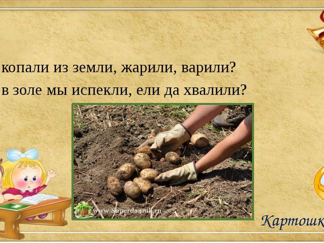Что копали из земли, жарили, варили? Что в золе мы испекли, ели да хвалили?...