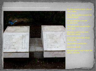 Это фотография памятника братской могилы, где выбита фамилия моего прапрадеда
