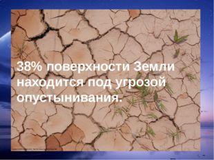 38% поверхности Земли находится под угрозой опустынивания.