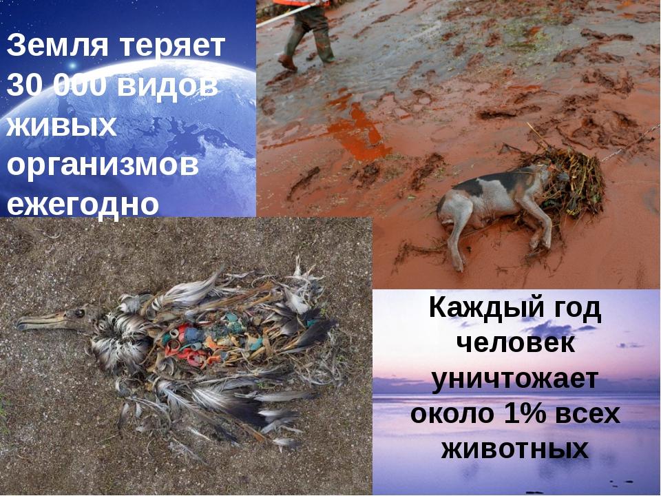 Земля теряет 30 000 видов живых организмов ежегодно Каждый год человек унич...