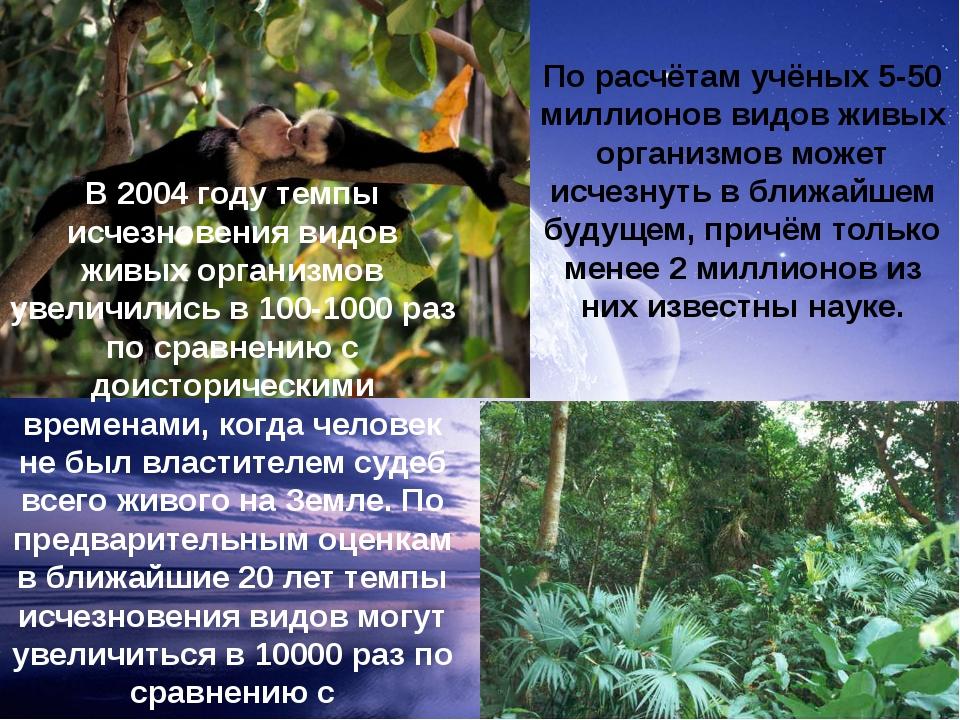 В 2004 году темпы исчезновения видов живых организмов увеличились в 100-1000...