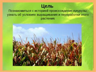 Цель Познакомиться с историей происхождения кукурузы, узнать об условиях выра