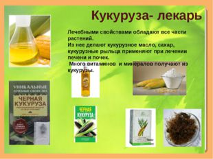 Кукуруза- лекарь Лечебными свойствами обладают все части растений. Из нее дел