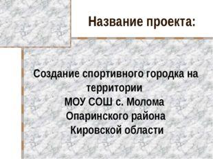Название проекта: Создание спортивного городка на территории МОУ СОШ с. Молом