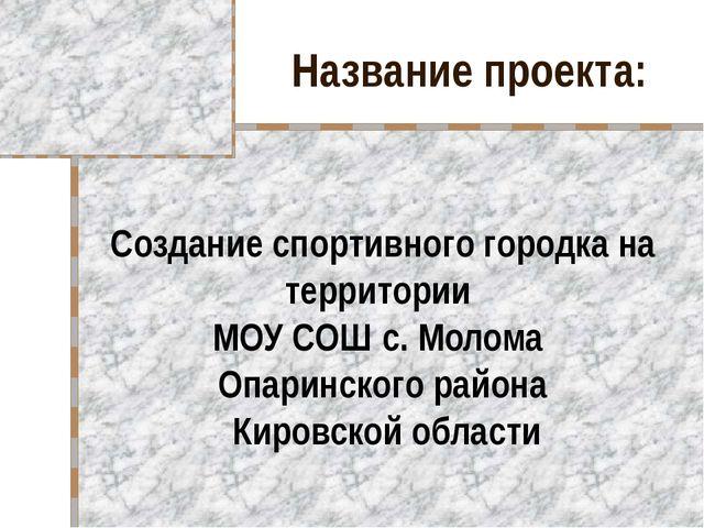 Название проекта: Создание спортивного городка на территории МОУ СОШ с. Молом...