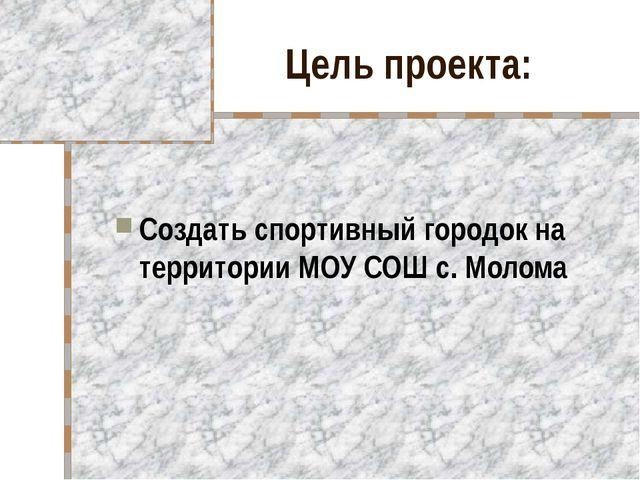 Цель проекта: Создать спортивный городок на территории МОУ СОШ с. Молома
