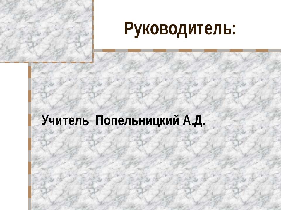 Руководитель: Учитель Попельницкий А.Д.