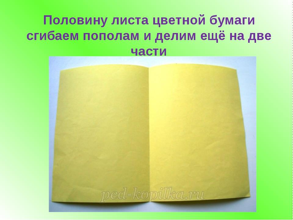 Половину листа цветной бумаги сгибаем пополам и делим ещё на две части