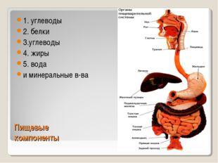 Пищевые компоненты 1. углеводы 2. белки 3.углеводы 4. жиры 5. вода и минераль