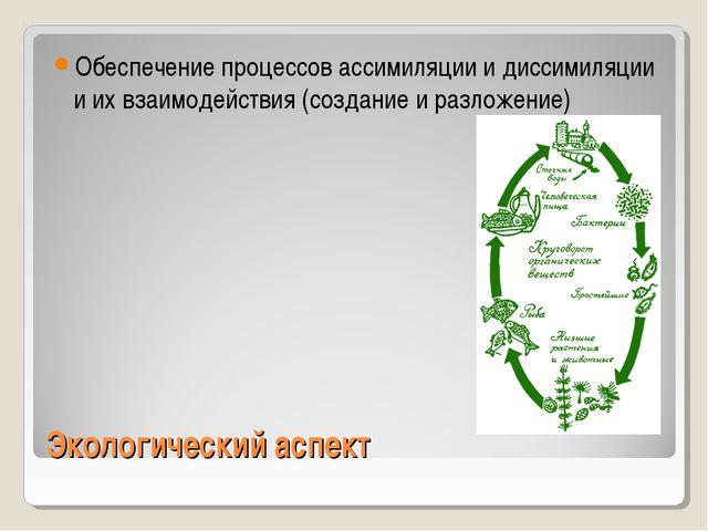 Экологический аспект Обеспечение процессов ассимиляции и диссимиляции и их вз...