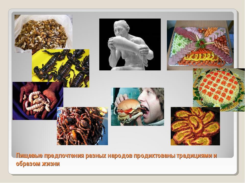 Пищевые предпочтения разных народов продиктованы традициями и образом жизни