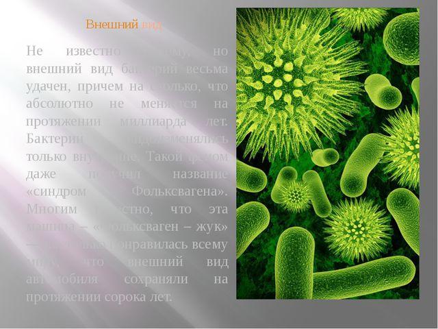 Внешний вид Не известно почему, но внешний вид бактерий весьма удачен, причем...