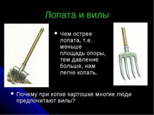 Лопата и вилы Почему при копке картошке многие люди предпочитают вилы? Чем ос