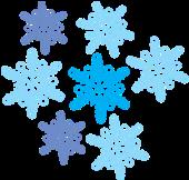 D:\Школа уроки\Природа\Уроки\Урок 34 Экскурсия\Иллюстрации\Рис 34-05 Снег.png