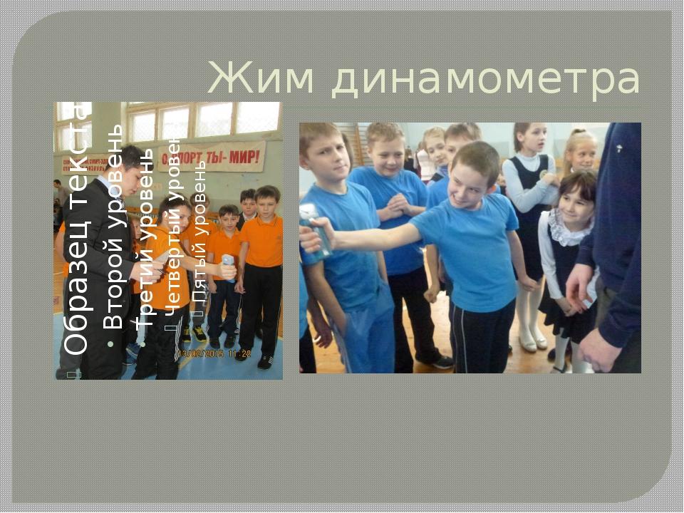 Жим динамометра