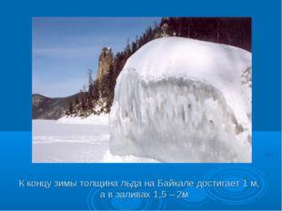 К концу зимы толщина льда на Байкале достигает 1 м, а в заливах 1,5 – 2м