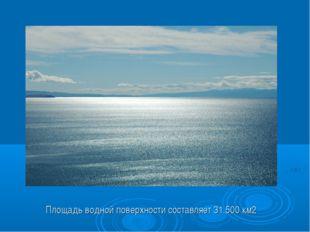 Площадь водной поверхности составляет 31.500 км2