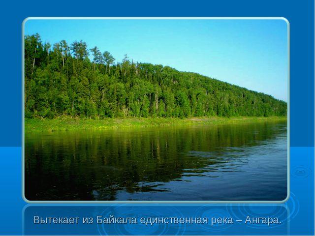 Вытекает из Байкала единственная река – Ангара.