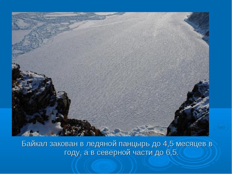 Байкал закован в ледяной панцырь до 4,5 месяцев в году, а в северной части до...