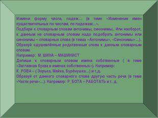 — Измени форму числа, падеж… (в теме «Изменение имен существительных по числа