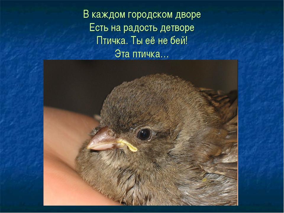 В каждом городском дворе Есть на радость детворе Птичка. Ты её не бей! Эта пт...