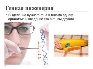 Генная инженерия Выделение нужного гена в генома одного организма и введение