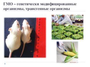 ГМО – генетически модифицированные организмы, трансгенные организмы