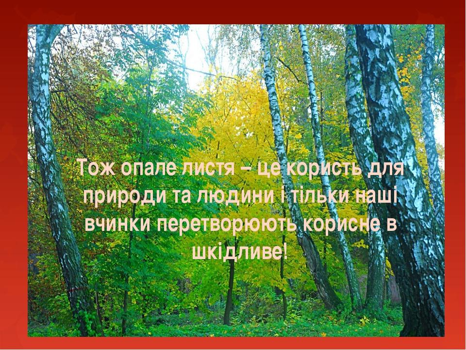 Тож опале листя – це користь для природи та людини і тільки наші вчинки перет...