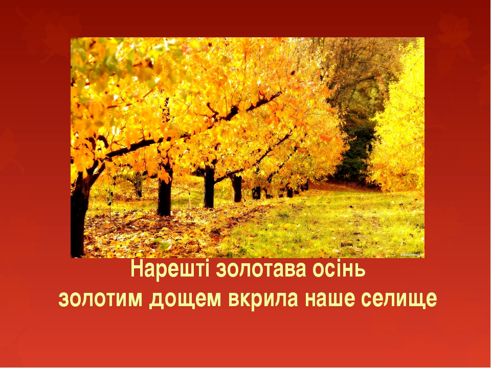 Нарешті золотава осінь золотим дощем вкрила наше селище
