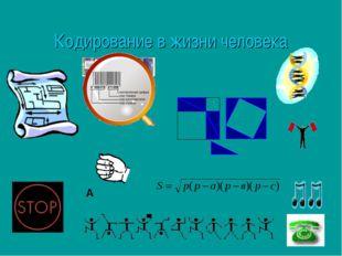 Кодирование в жизни человека