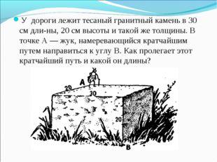 У дороги лежит тесаный гранитный камень в 30 см длины, 20 см высоты и такой