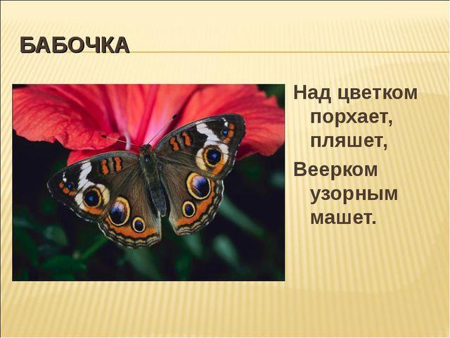 БАБОЧКА Над цветком порхает, пляшет, Веерком узорным машет.